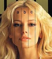 Код Да Винчи — идеальные пропорции носа